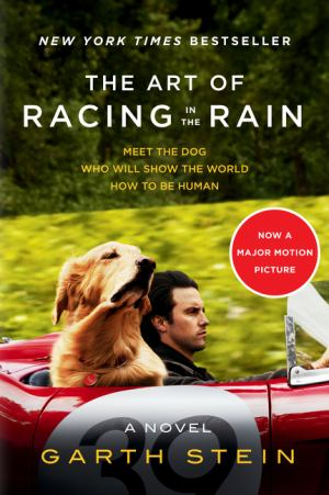 The Art Of Racing In The Rain (SKU 1034905299)