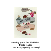 Get Well Tortoises Card